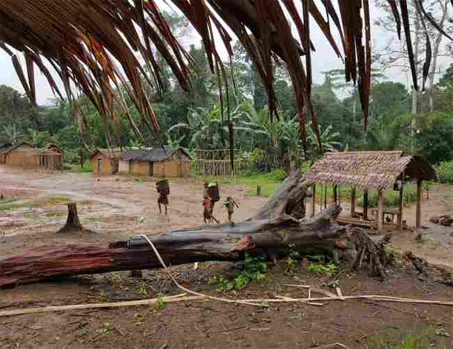 A village helped by Forest Peoples